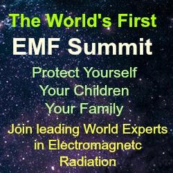 2014 EMF Summit
